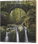 110414p155 Wood Print