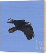 110506p059 Wood Print