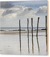 111230p036 Wood Print