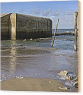 111230p037 Wood Print