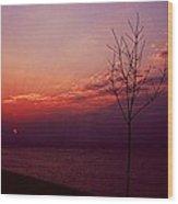 112601-20 Wood Print