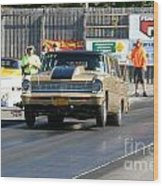 Esta Safety Park 10-12-14 Wood Print