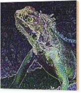 Abstract Cayman Iguana Wood Print