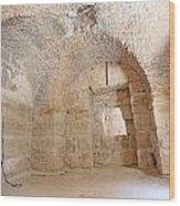 Gladiator Prison Wood Print