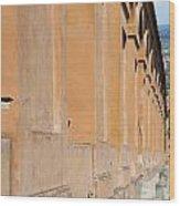 Archway Wood Print