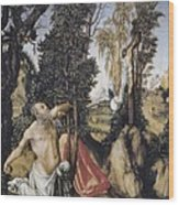 Cranach, Lucas, The Elder 1472-1553 Wood Print