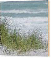 Dune Grass... Wood Print