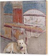 Italy, Campania, Pompeii Wood Print