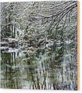 Winter Along Williams River Wood Print