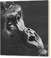 120118p088 Wood Print