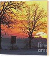 120425p240 Wood Print