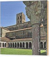 120520p131 Wood Print