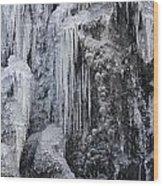 121213p150 Wood Print