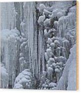 121213p157 Wood Print