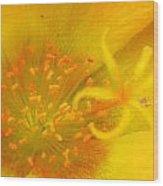 12181 Wood Print