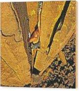 Climber Wood Print