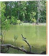 1246c1 Wood Print