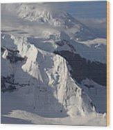 Antarctica Wood Print
