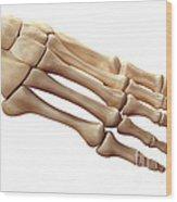 Foot Bones Wood Print