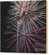 Local Fireworks Wood Print by Mark Dodd
