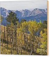 Rocky Mountain Autumn Wood Print