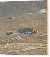 Sinkholes In Northern Dead Sea Area Wood Print