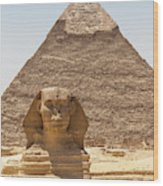 Travel Images Of Egypt Wood Print
