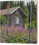 130201p102 Wood Print