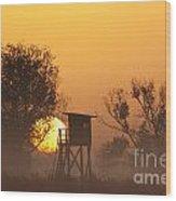 130201p249 Wood Print