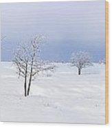 130201p322 Wood Print