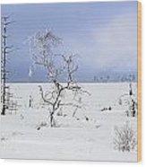 130201p330 Wood Print