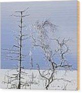 130201p331 Wood Print