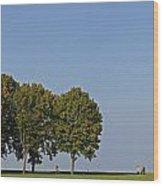 130918p135 Wood Print