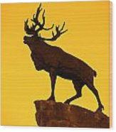 130918p143 Wood Print