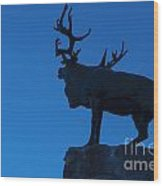 130918p145 Wood Print
