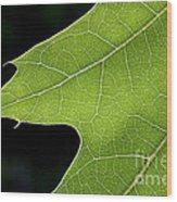 131114p195 Wood Print
