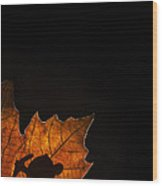 131114p323 Wood Print