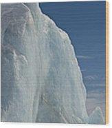 Pack Ice, Antarctica Wood Print