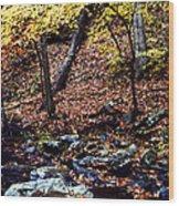South Branch Quantico Creek Wood Print