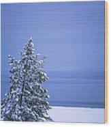 140303a-12 Winter Blues Wood Print