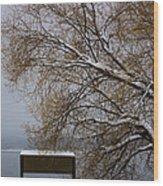 140303a-13 Winter Color Wood Print