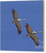 140314p060 Wood Print