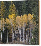 Guardians Of Trestle Creek  -  141102a-138 Wood Print