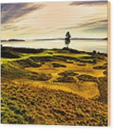 #15 At Chambers Bay Golf Course  Wood Print by David Patterson