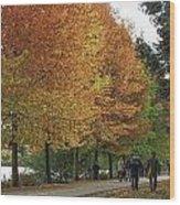 Greenlake Wood Print