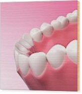 Human Teeth Wood Print