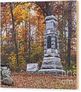 150th New York Infantry Wood Print