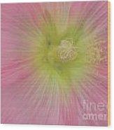 Loveflowers Wood Print