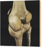 Knee Bones Right Wood Print