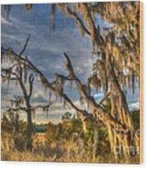 Winter Marsh Wood Print